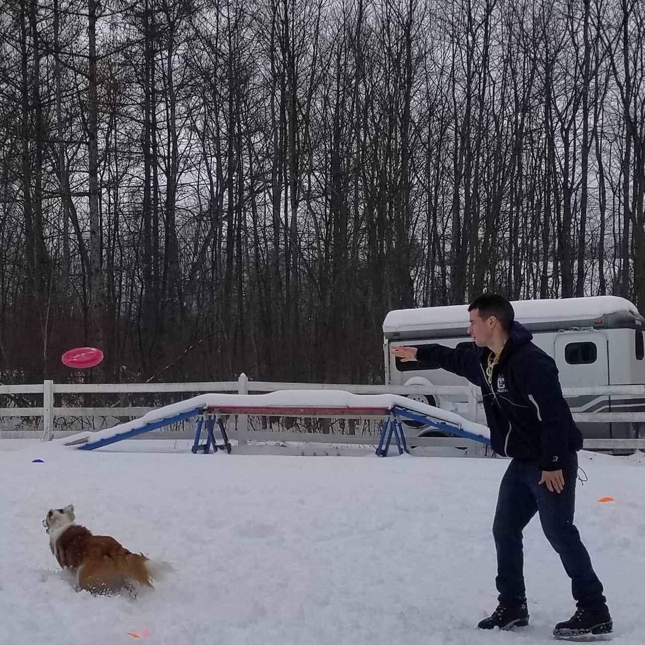 Brian's dog boarding