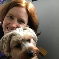Alyse's dog day care