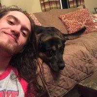 Stone's dog boarding