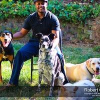 Robert's dog boarding