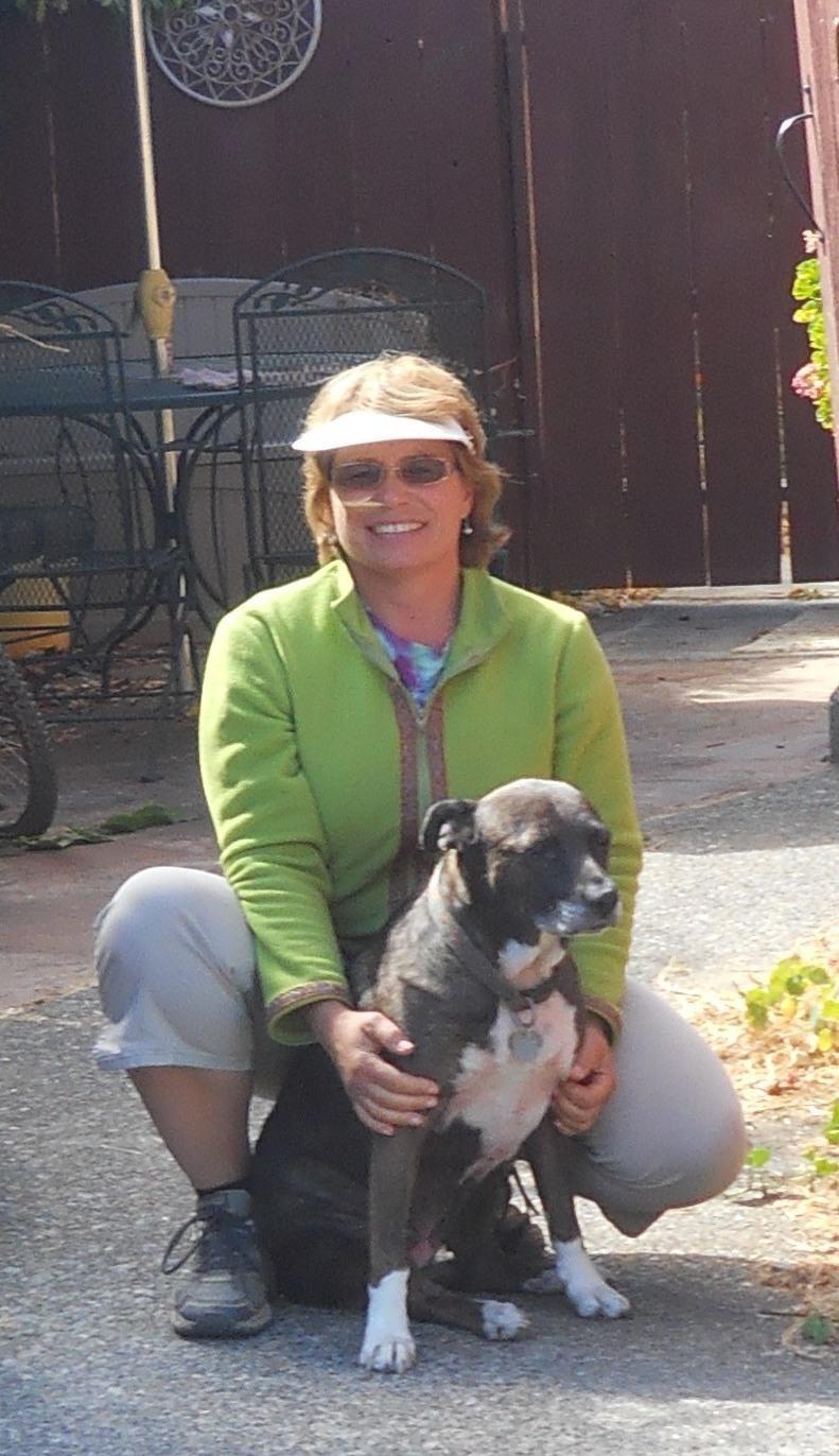 Pam's dog boarding