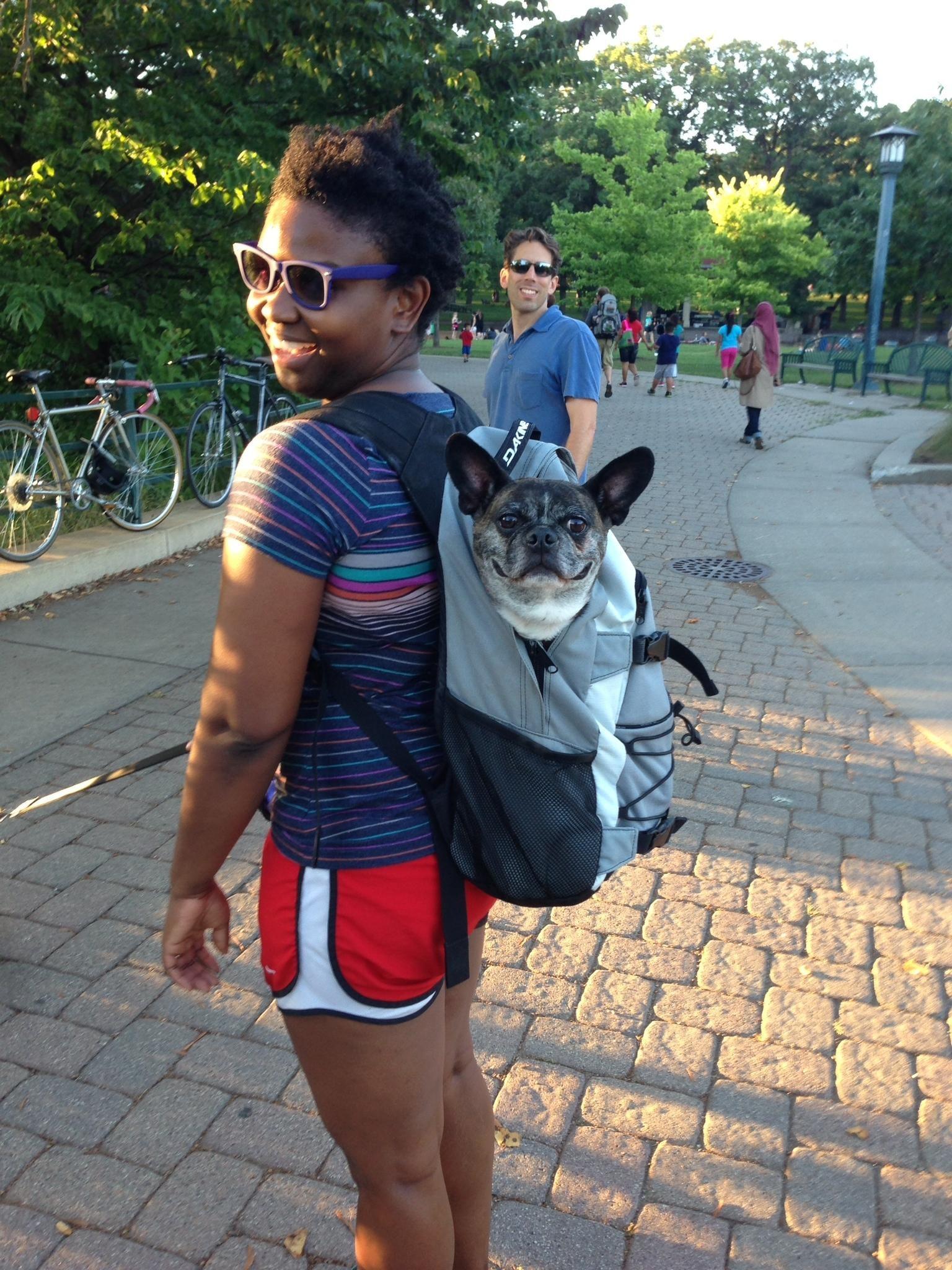 Nichole's dog boarding