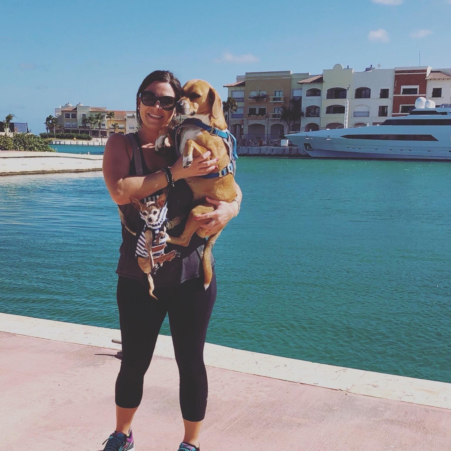 Stefani's dog day care