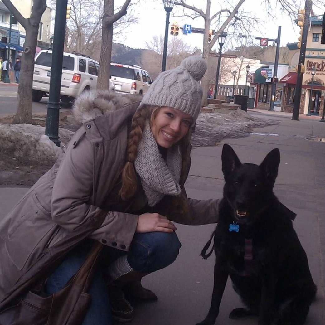 Kristi's dog day care
