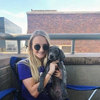 Sydney's dog day care