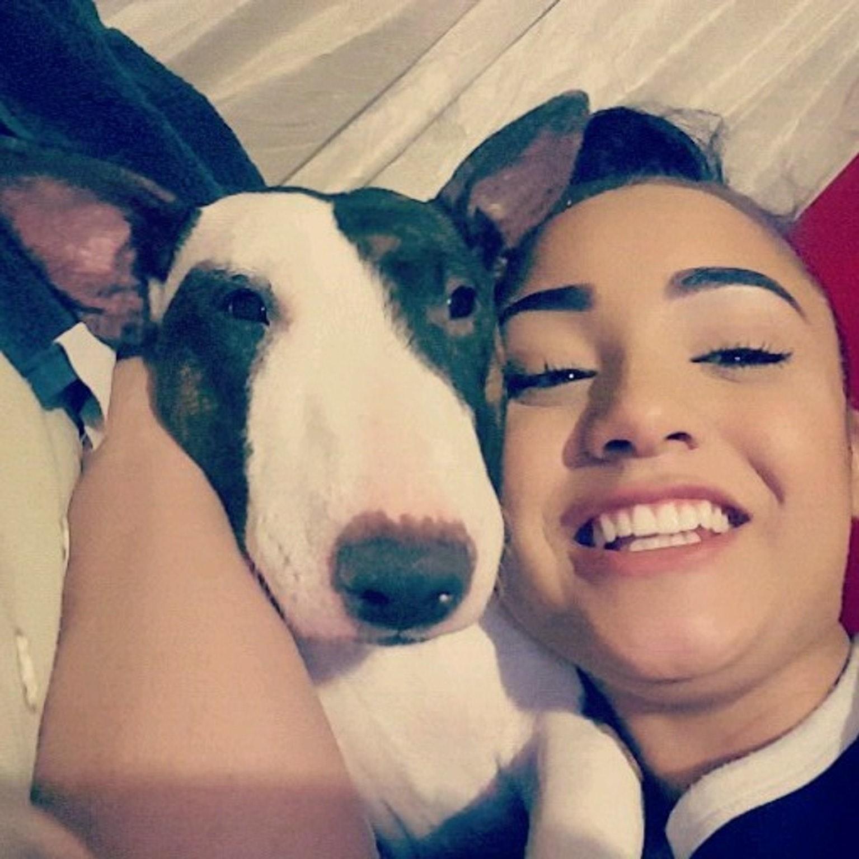 Sapphire-Zhanee's dog day care
