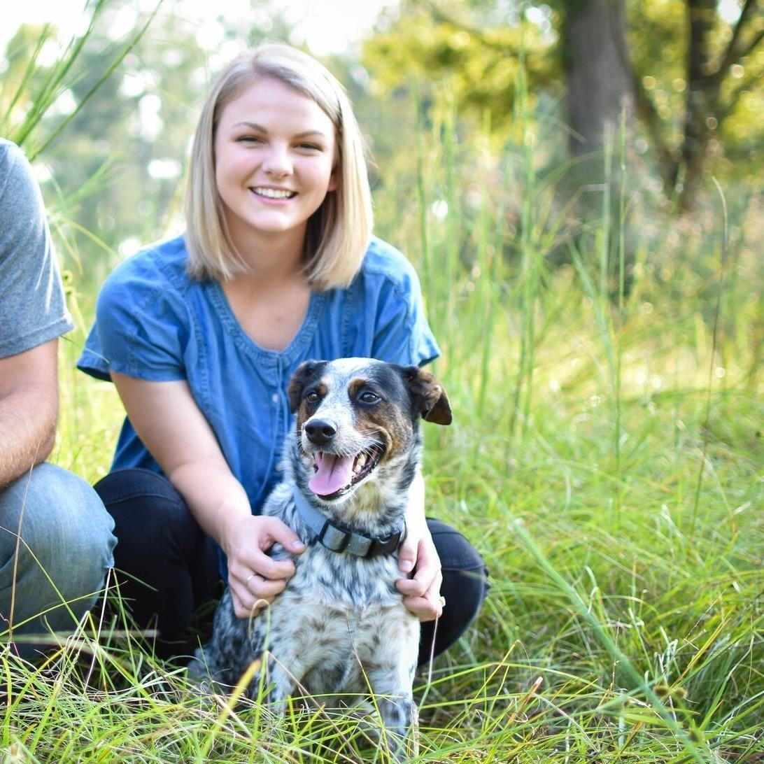 dog walker Madison