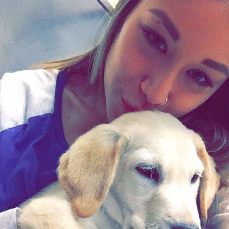 dog walker Brea