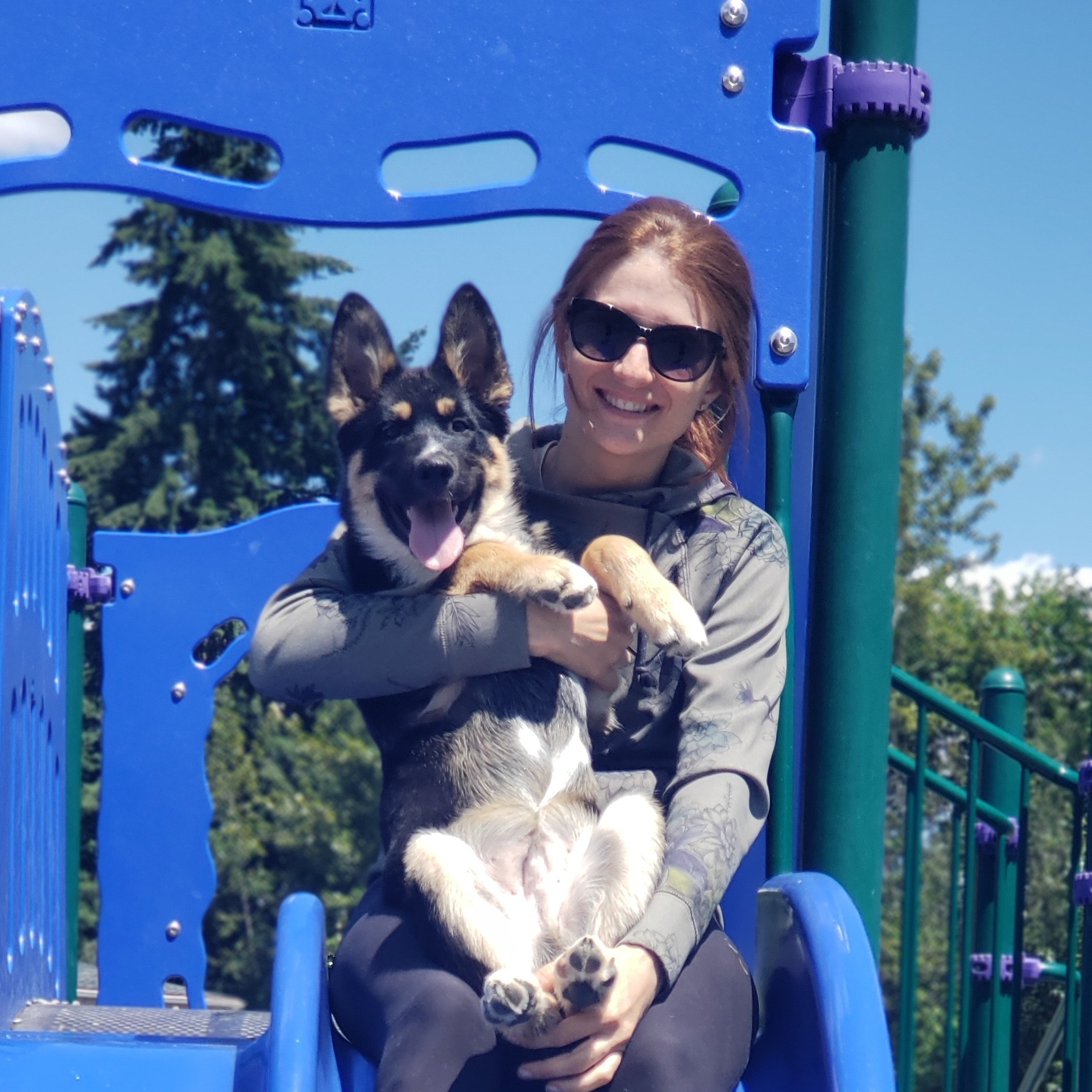 Laci's dog boarding