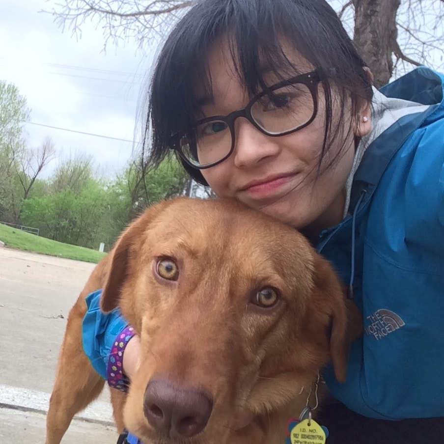 Suzy's dog boarding