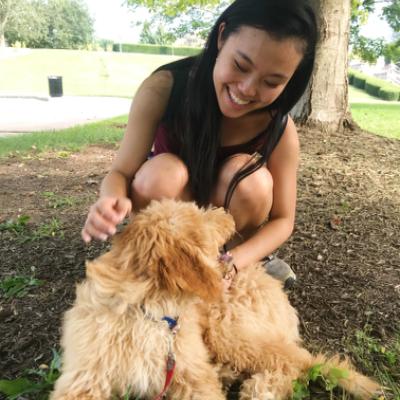 Rina's dog boarding