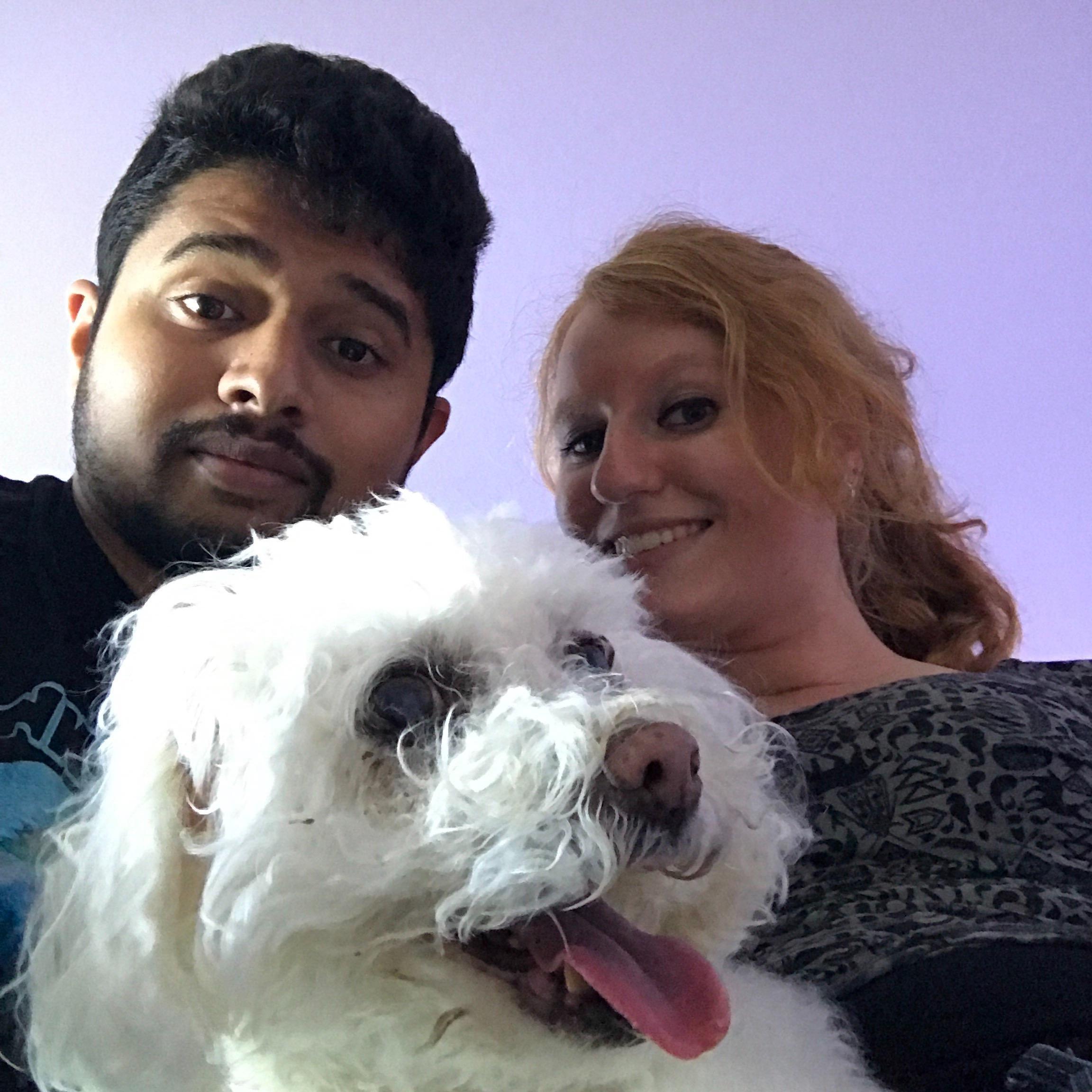 Rishabh's dog day care