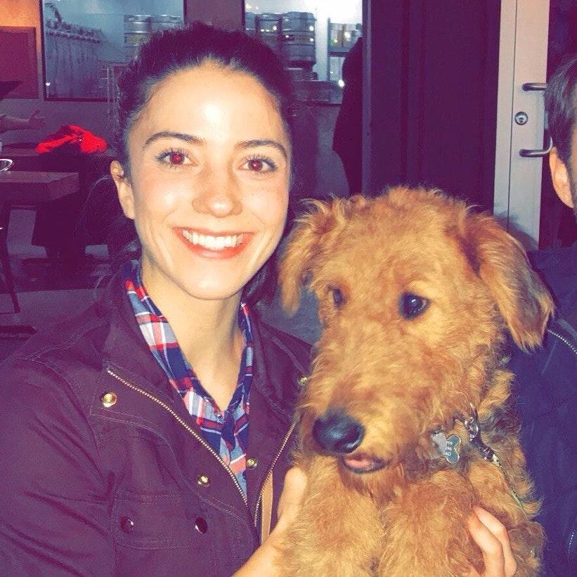 Stefanie's dog boarding