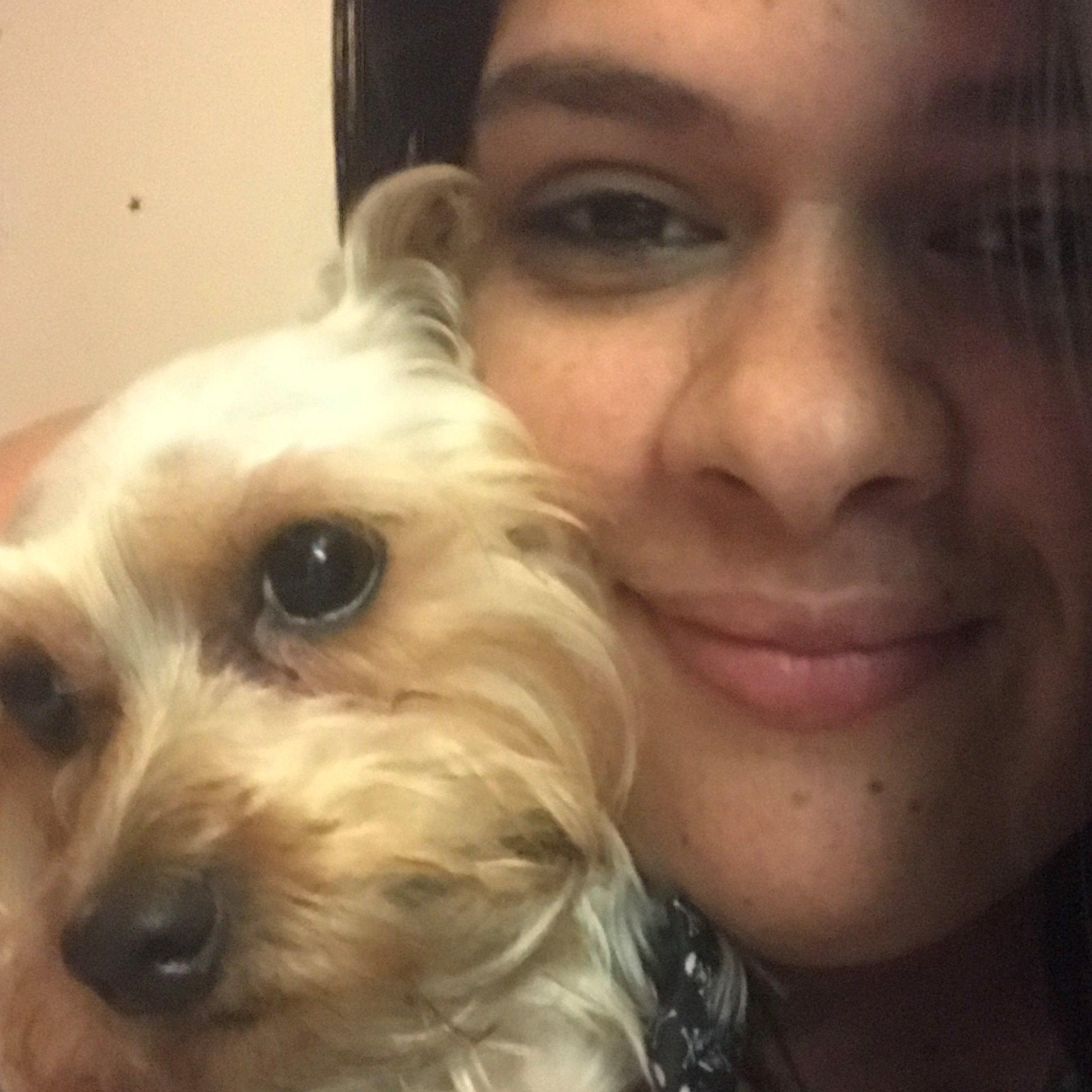 Jazmin's dog day care