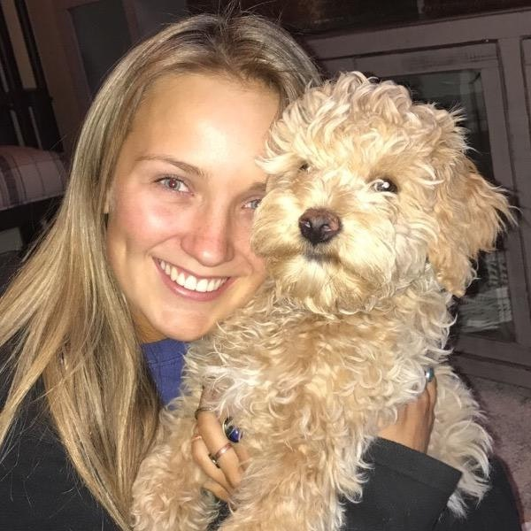 Alexus's dog day care