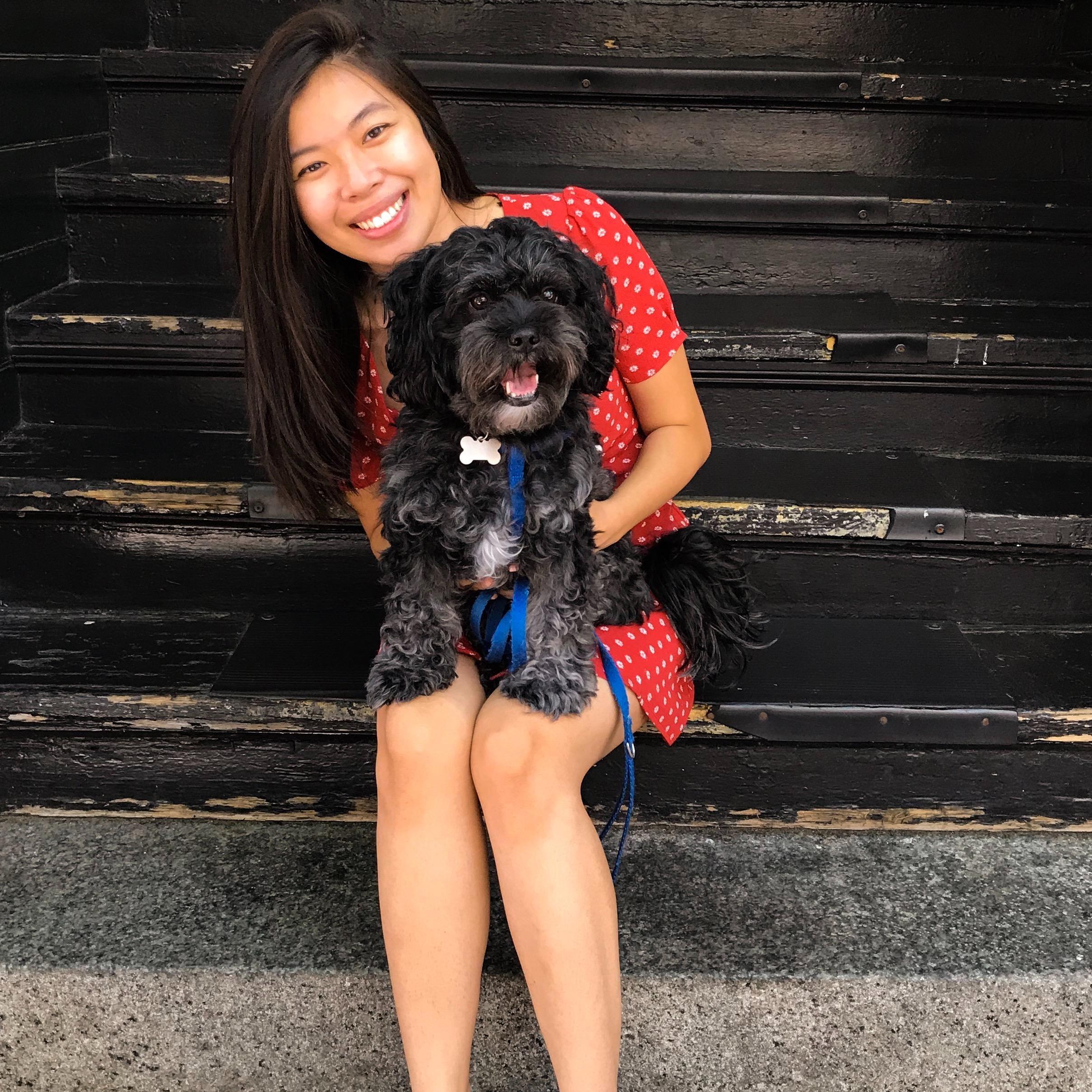 Angeline's dog boarding