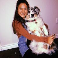 Zoie's dog boarding