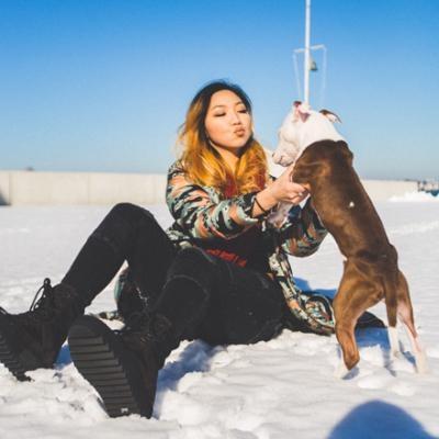 Nyx's dog boarding