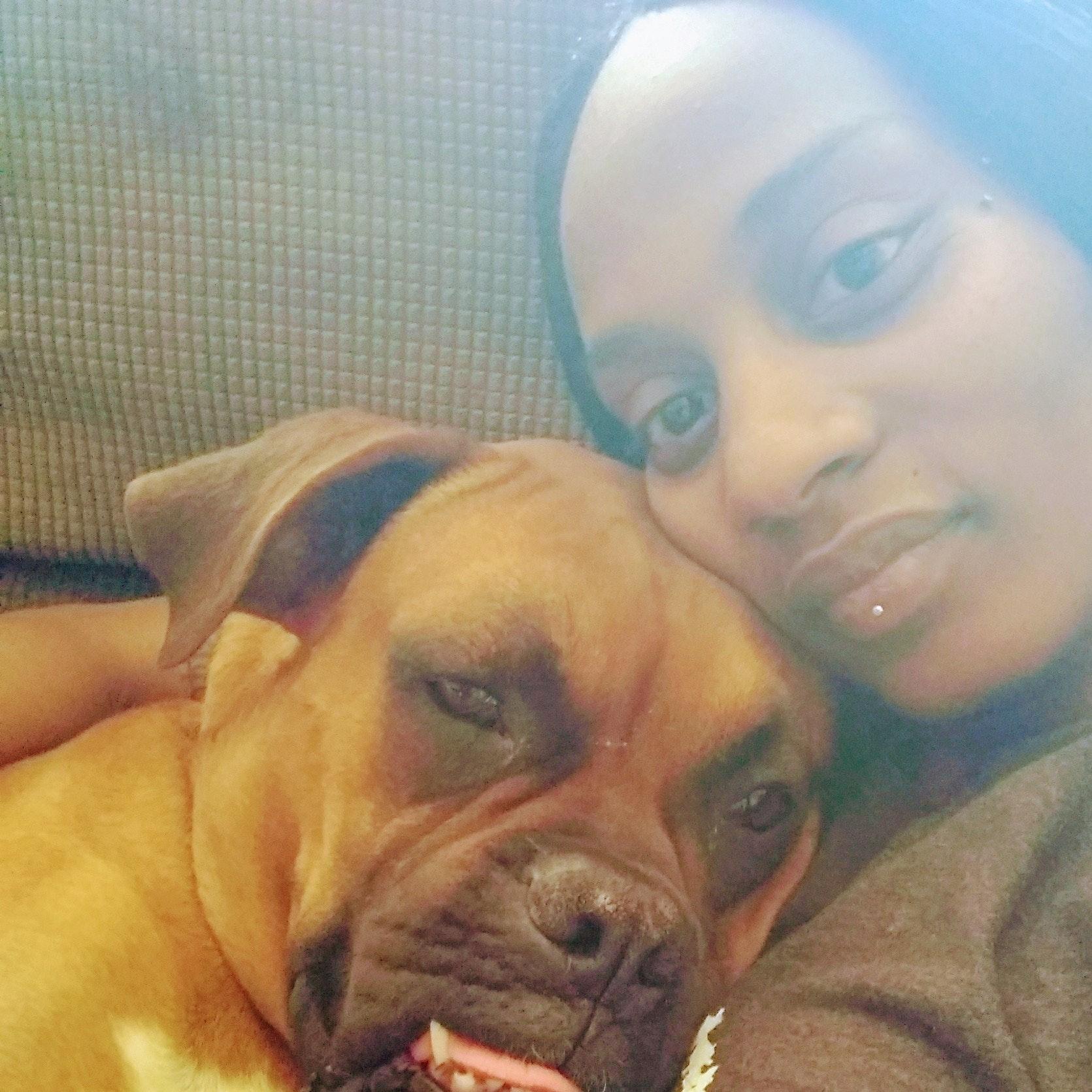 Tamra's dog day care