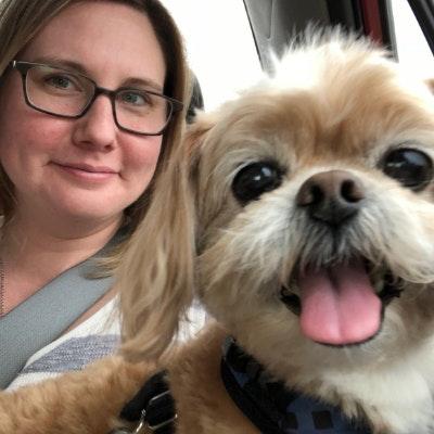 Lisa & Sarju's dog boarding