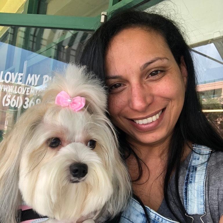 Gina's dog boarding