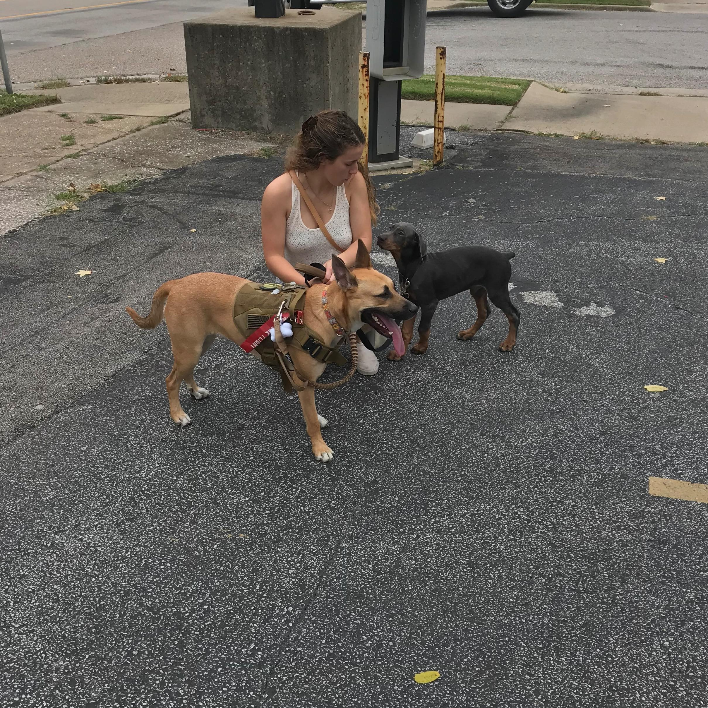 dog walker Mikaela