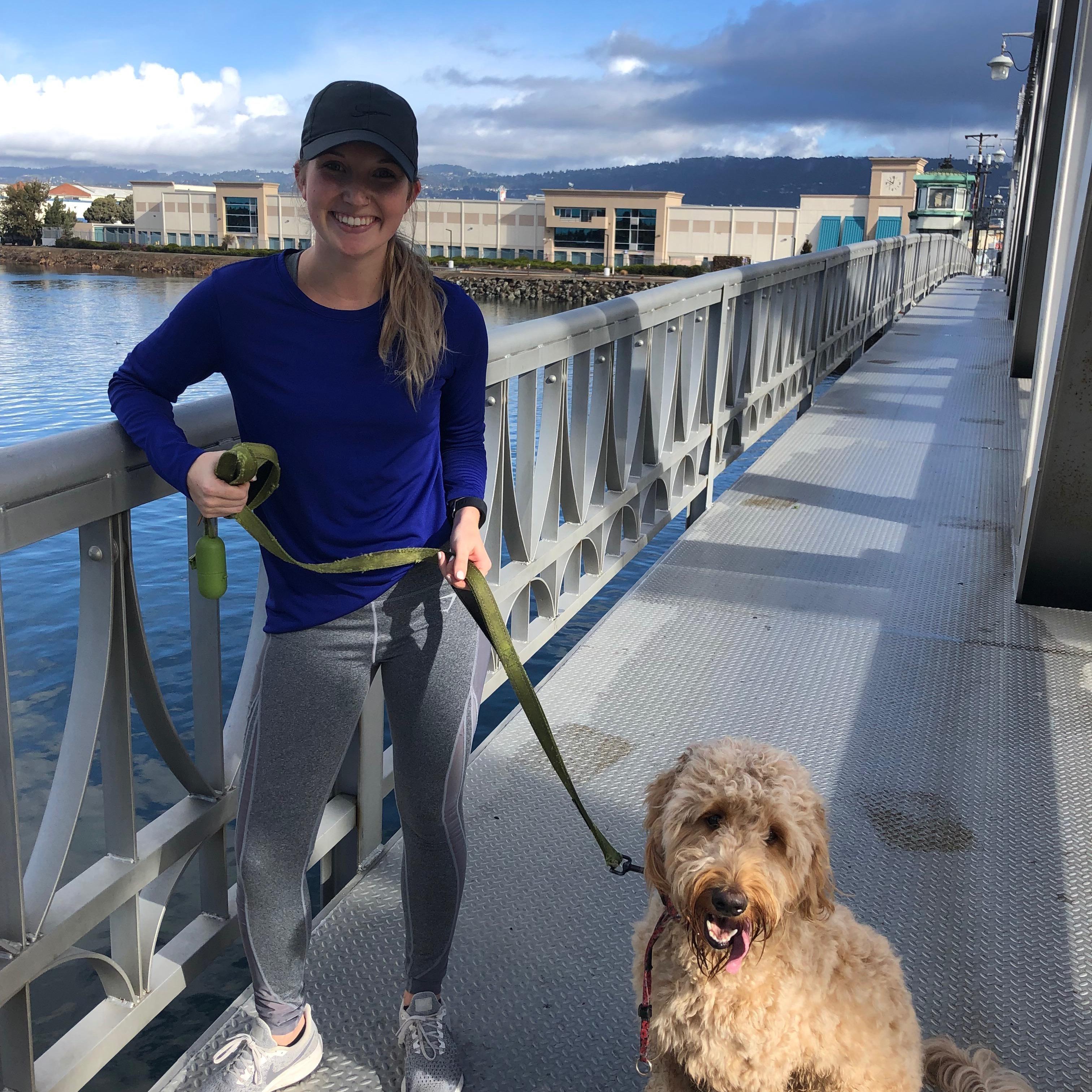 Samantha's dog boarding