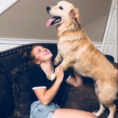 Annie's dog boarding