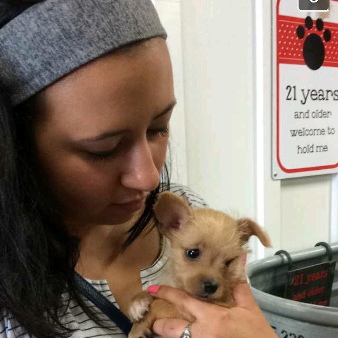 dog walker Lexy