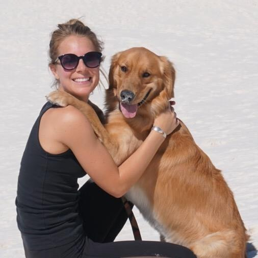Kayleigh's dog boarding