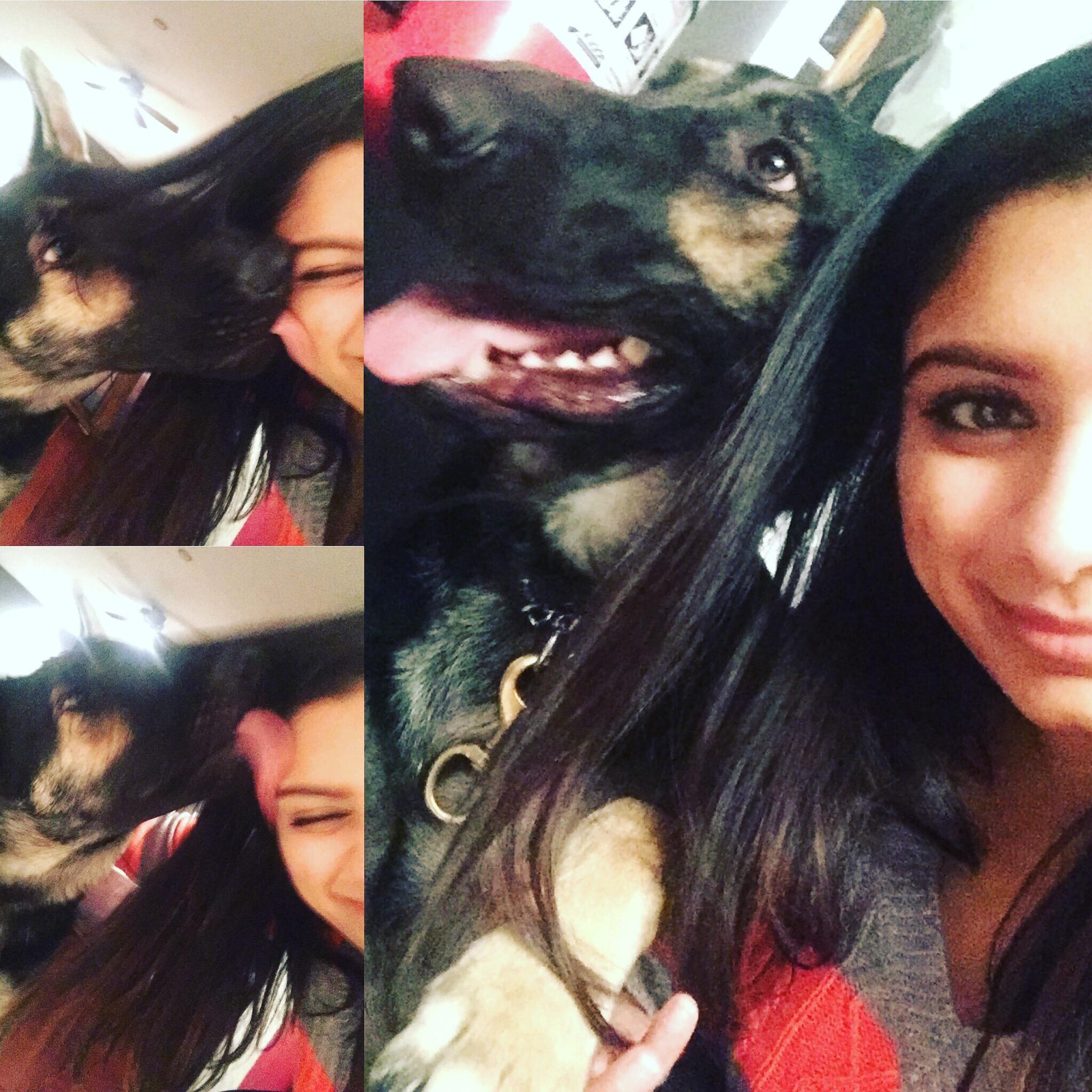 Akshi's dog day care