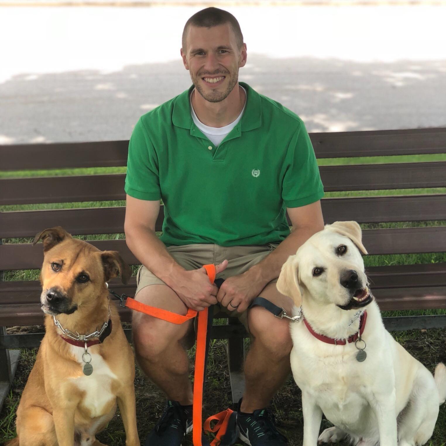 David's dog day care