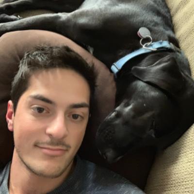 Evan's dog day care