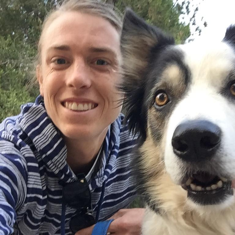 Tom's dog day care