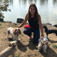 Vancouver's Best Dog Boarding Sitters & Dog Walkers | Rover com