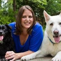 Sharon's dog day care