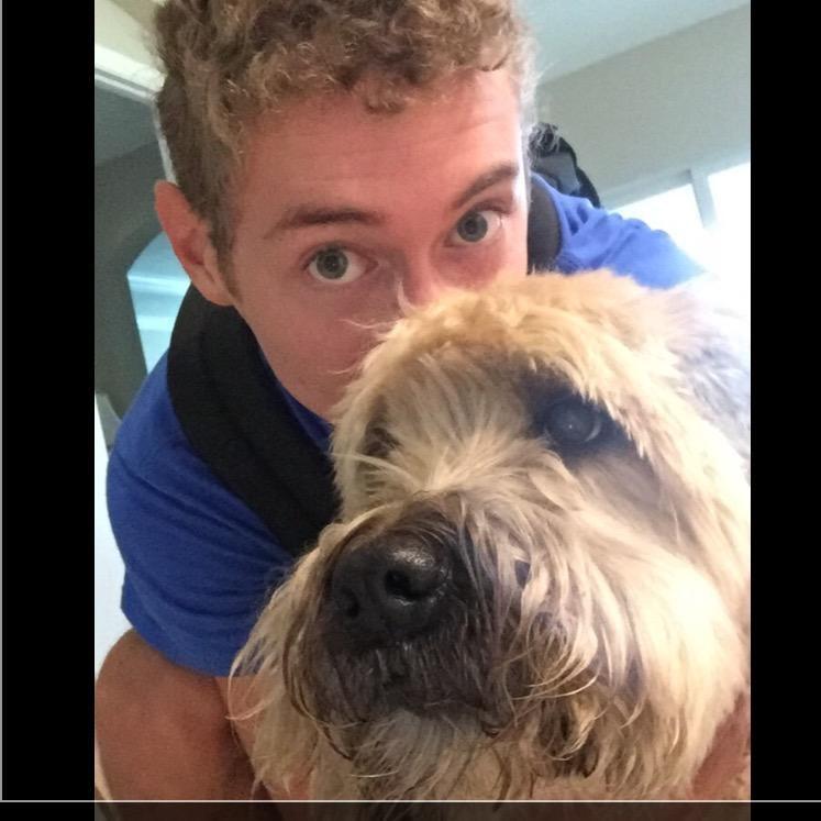 Robbie's dog boarding