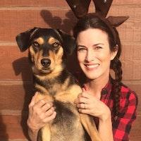 Lori Lynn's dog day care