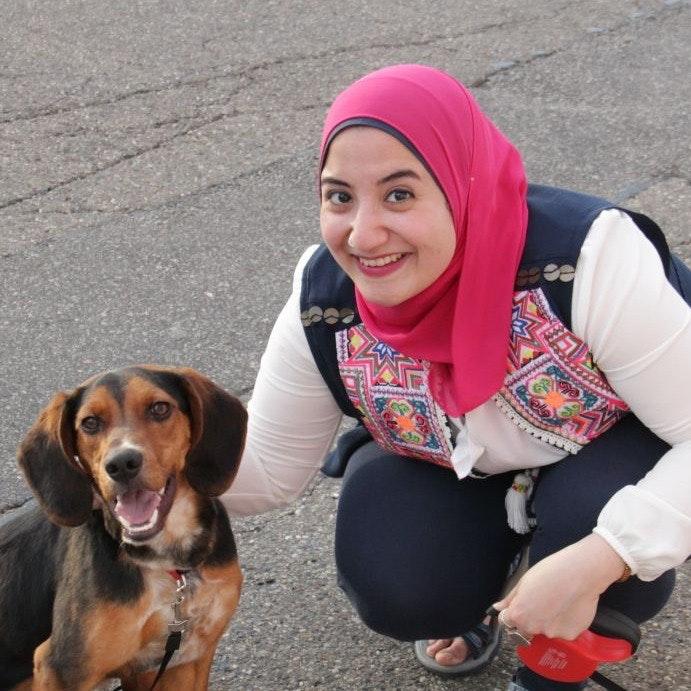 Habiba's dog day care