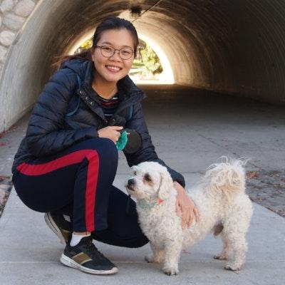 Trang Phuong Thanh's dog boarding