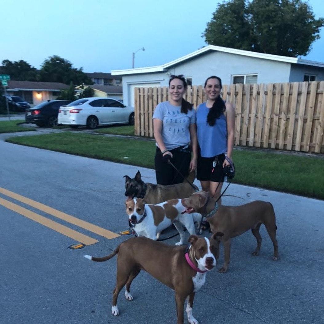 Sara, Maria & Raul's dog boarding