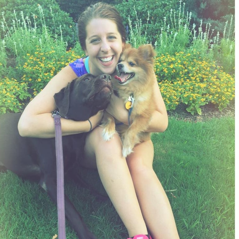 Carson's dog boarding
