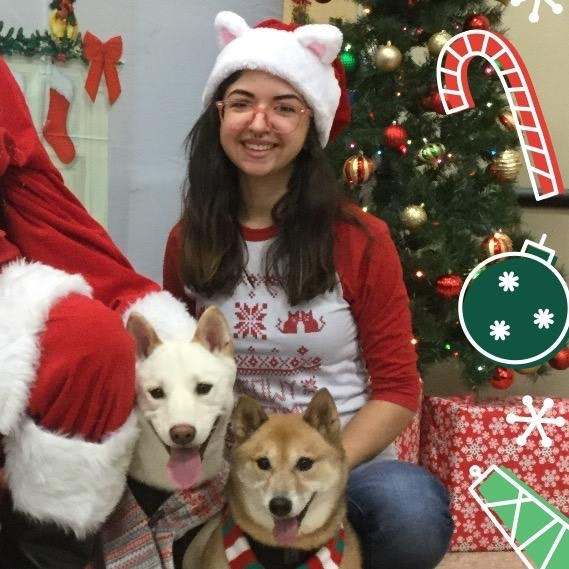 Catalina's dog day care