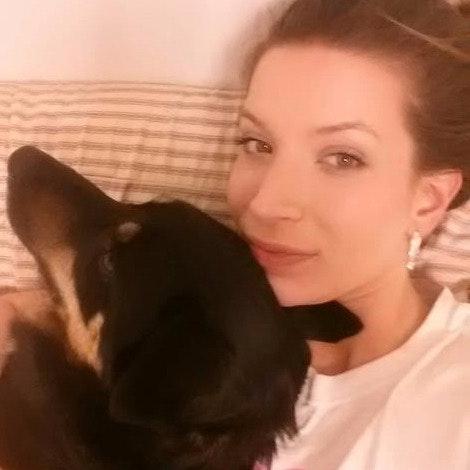 Aja's dog day care
