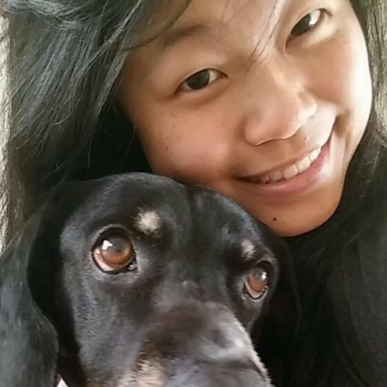 Yen's dog day care