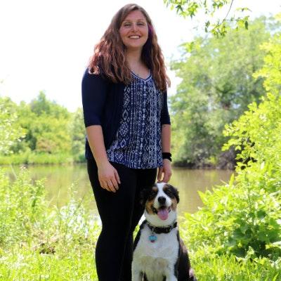 Rachel's dog day care