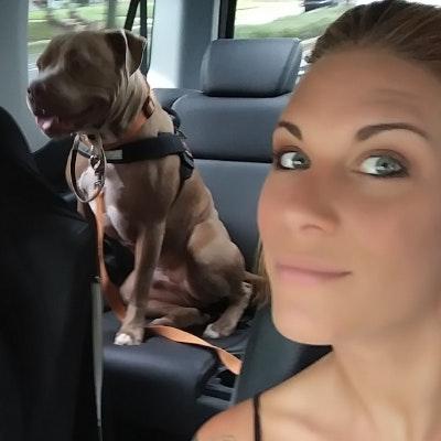 Sheranda's dog day care