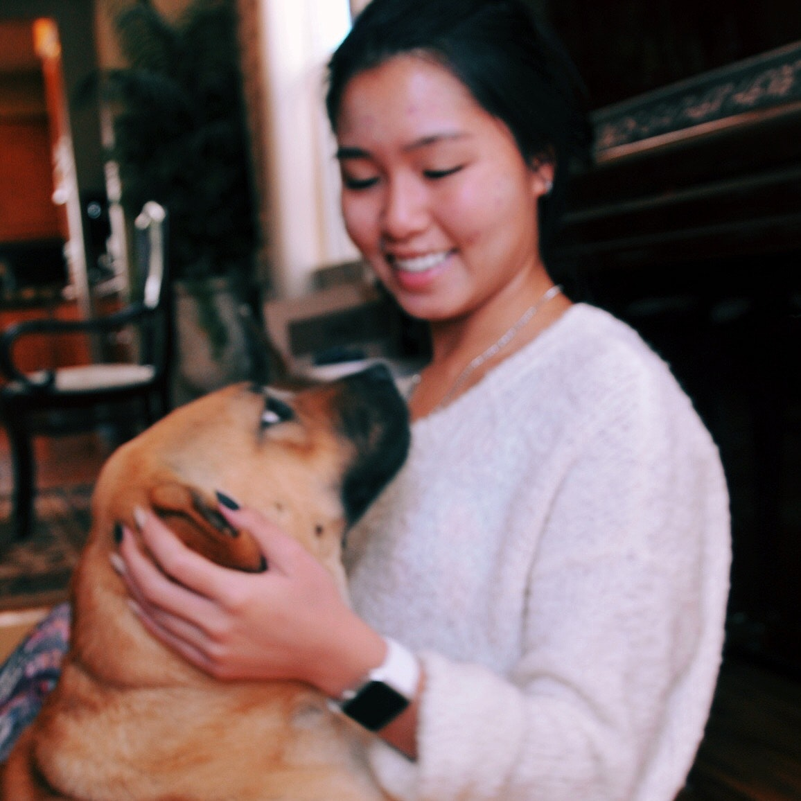 Trang's dog boarding