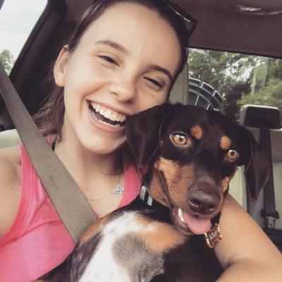 Julia's dog boarding