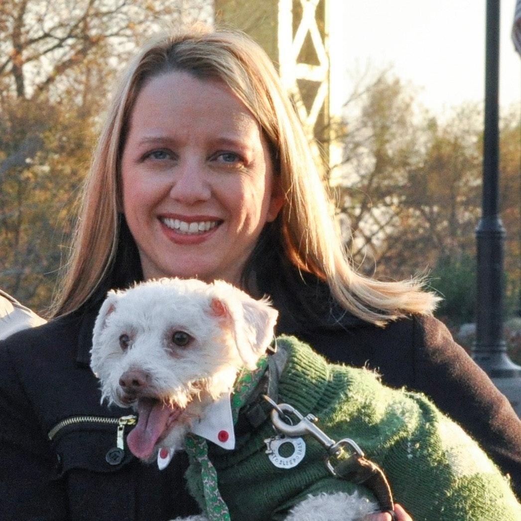 Lynnette & Curtis's dog day care
